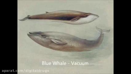موزیک غمگین بازی نهنگ آبی ( خطر افسردگی )