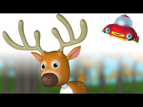 ویدیوهای آموزشی تو تی تو - اسباب بازی جانوران 57