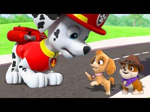 کارتون سگ های نگهبان قسمت 1 دانلود انیمیشن سگ های نگهبان