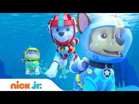 کارتون سگ های نگهبان قسمت 4 دانلود انیمیشن سگ های نگهبان