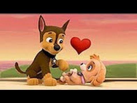 کارتون سگ های نگهبان قسمت 30 دانلود انیمیشن سگ های نگهبان