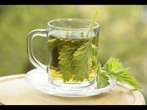 آشپزی ساده - آموزش درست کردن چای گزنه