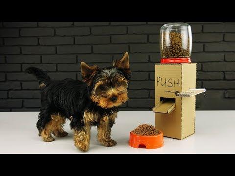 برنامه جعبه کاردستی در سایت جعبه-ساختن انباره غذای سگ-کارتون جعبه کاردستی