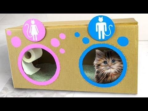 برنامه جعبه کاردستی قسمت توالت گربه