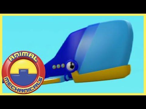 کارتون حیوانات ماشینی-حیوانات ماشینی شبکه پویا