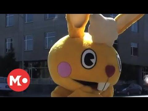 دانلود سریال دوستان شاد درختی -کلیپ 109-دانلود مجموعه کامل انیمیشن دوستان شاد درختی در لینک زیر این ویدیو