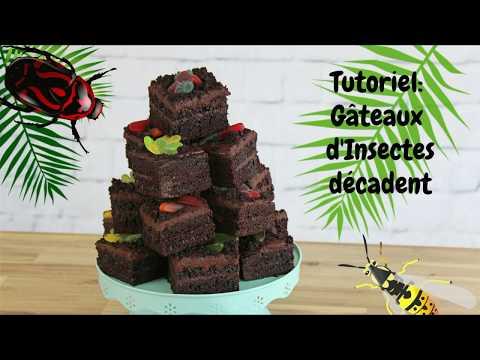آشپزی -تزیین کیک 456