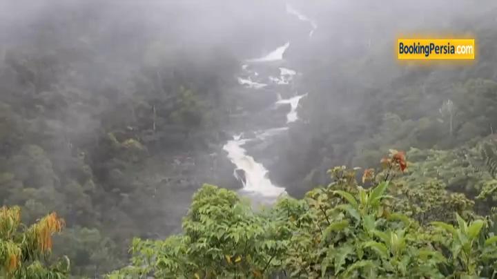پارک ملی رانومافانا، بهشتی در جزیره زیبای ماداگاسکار - بوکینگ پرشیا