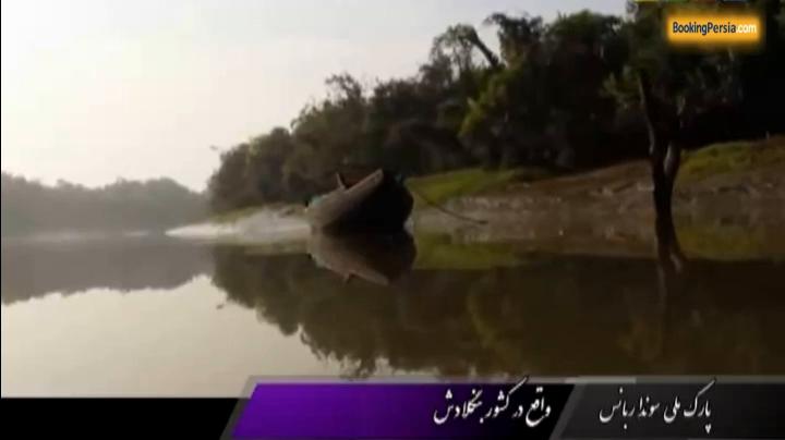 جنگل زیبای سونداربانس با تنوع زیستی در مرز هند و بنگلادش - بوکینگ پرشیا