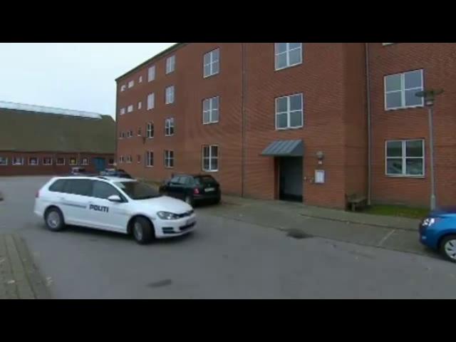 قتل یک زن و دو دختر مهاجر سوری در دانمارک