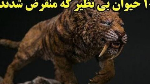 ۱۰ حیوان بی نظیر که منقرض شدند