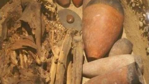انواع فلزیاب حفره یاب و نقطه زن